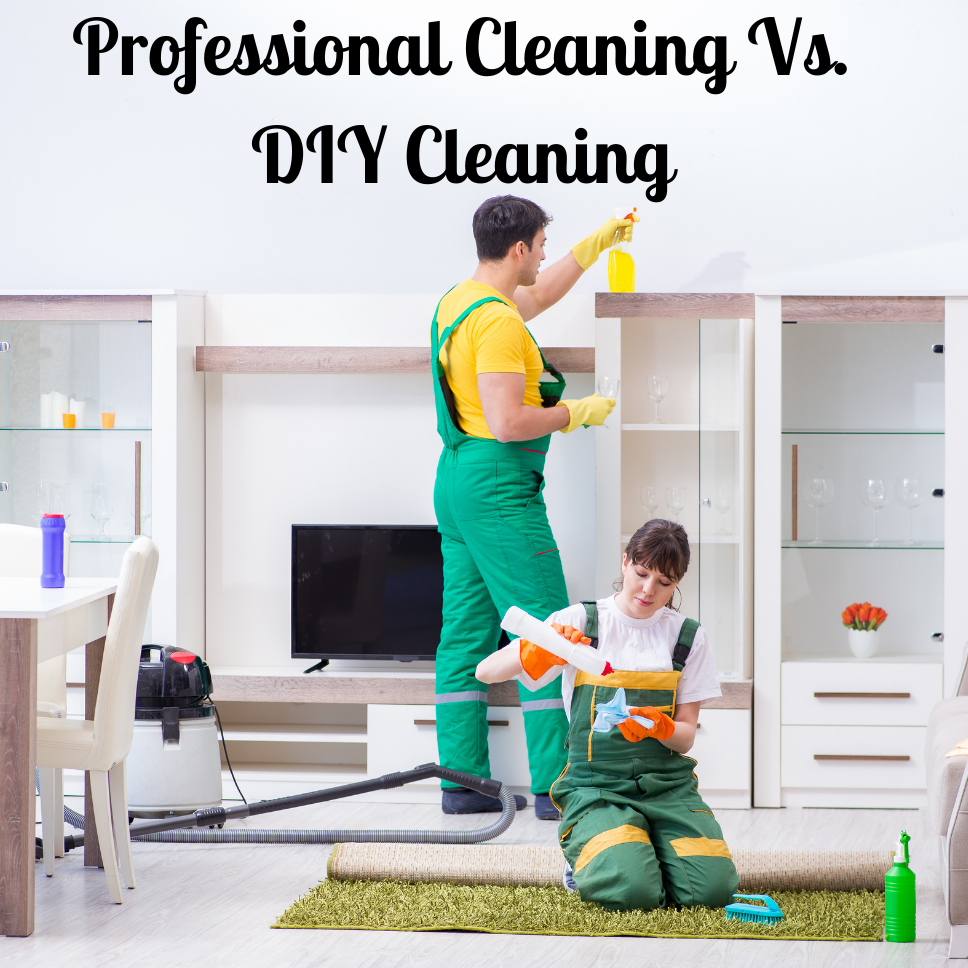 professional cleaning vs diy cleaning